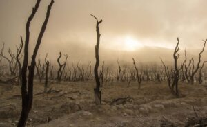 Desertificazione, degradazione e siccità